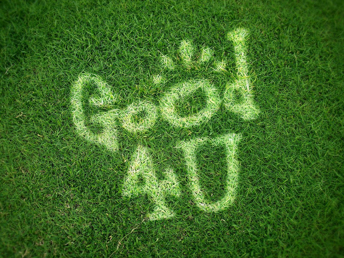 Good 4 U Grass